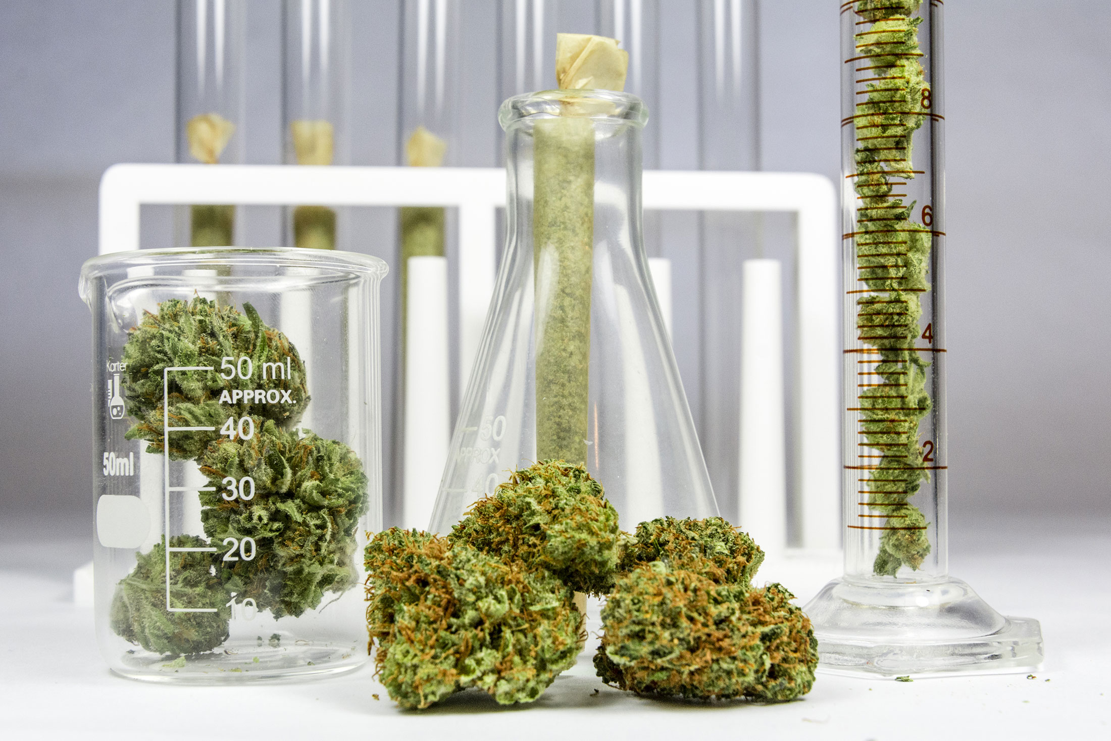 California Cannabis Testing Labs